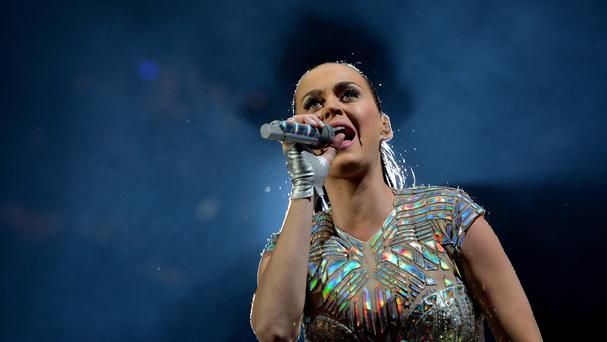 Katy Perry campaigned for Hillary Clinton during last year's US election