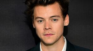 "Harry Styles is ""adamant"" he wants the defendant to get help but does not want to see him again (Ian West/PA)"