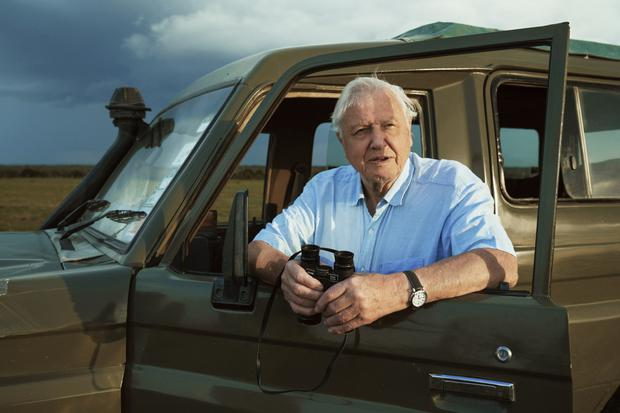 New series: Attenborough on location in Kenya while filming Seven Worlds, One Planet