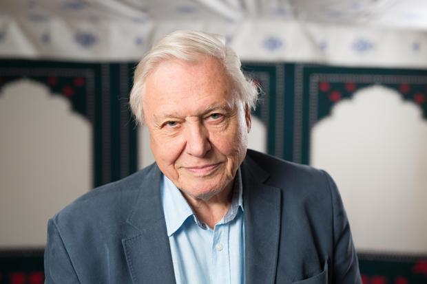 """File photo dated 24/09/15 of Sir David Attenborough, who has said the BBC was """"absolutely right"""" to let The Great British Bake Off go."""