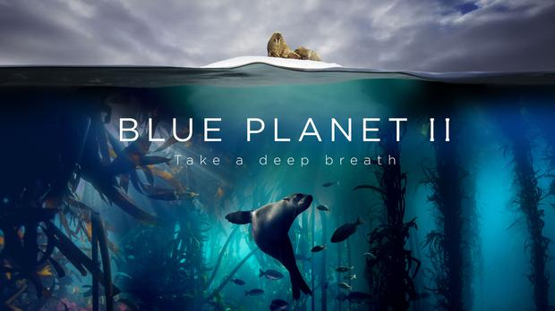 Blue Planet II topped the iPlayer charts. (BBC/PA)