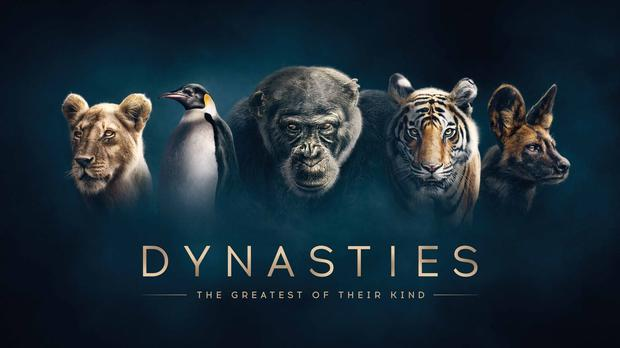 BBC's new Dynasties series to be made available in Ultra HD (BBC/PA)