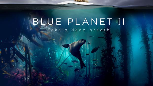 Blue Planet II caught the attention of Netflix, BBC chief Tim Davies told a conference (Lisa Labinjoh/Joe Platko/BBC/PA)