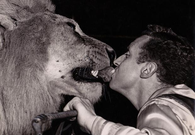 Notorious: Bill Stephens was mauled to death by a lion he bought from Dublin Zoo