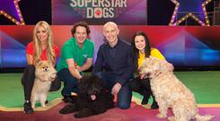 On repeat: Ray D'Arcy was joined by celebs and their pooches for RTE's latest reality show.