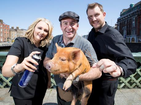 No fun on the farm: Maurice Walsh lends a hand to Tallaght business owners Nick and Claire in a new RTÉ series.