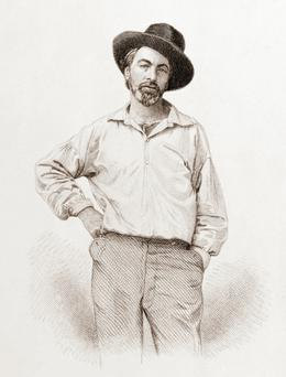 Walt Whitman by Samuel Hollyer