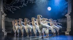 Ruffling feathers: the swans are played by an all-male troupe in Matthew Bourne's version