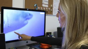 Ocean Ramsey reviews footage of her encounter with a great white shark (Caleb Jones/AP)