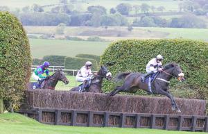 SOME HORSE: Some Reigncan deliver the goods at Wetherby. Photo: Grossick Racing Photography