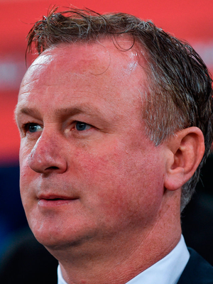 Northern Ireland manager Michael O'Neill Photo: David Fitzgerald/Sportsfile