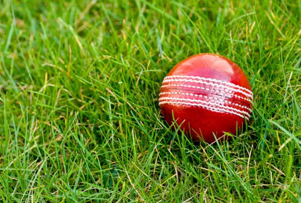 Captain Eoghan Delany and Robert Forrest both scored 76 and shared a fifth-wicket stand of 115. Photo: Getty Images/iStockphoto
