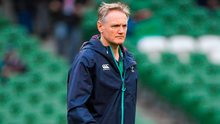 Schmidt has eight months to plan for his next real Test-match in November when South Africa, Argentina and a Tier Two nation will visit Dublin. Photo by Brendan Moran/Sportsfile