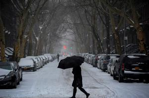 A woman walks beneath an umbrella in falling snow in the Fort Greene section of downtown Brooklyn in New York City. Reuters/Stephanie Keith