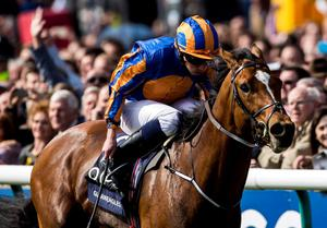 Gleneagles ridden by Ryan Moore leads the field home to win the QIPCO 2000 Guineas Stakes Race run during the QIPCO 2000 Guineas day of the QIPCO Guineas Festival at Newmarket