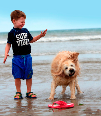 Cassie the dog and Daragh Applebee (3) from Castleknock at Portmarnock Beach.