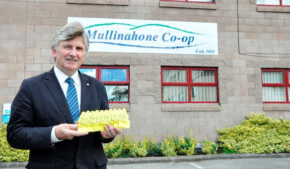 Liam Egan, general manager, Eurotags Division of Mullinahone Co-op, with some of the current tags