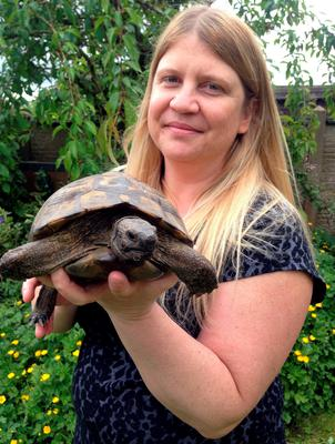 Debbie Acton, 42, of Barnacle in Warwickshire, with her tortoise Bobby, a 37-year-old Hermann's Tortoise. Richard Vernalls/PA Wire