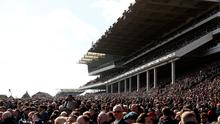 More than 65,000 people still flocked to Cheltenham yesterday despite mounting disapproval from those outside the sport. Photo: PA