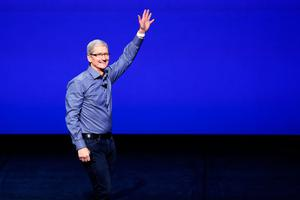 Tim Cook, CEO of Apple, had said the result of the same-sex marriage referendum would attract more foreign direct investment to Ireland