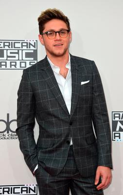 Recording artist Niall Horan arrives for the 2016 American Music Awards, November 20, 2016 at the Microsoft Theater