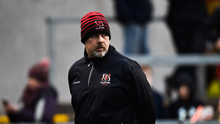 1 December 2018; Ulster head coach Dan McFarland during the Guinness PRO14 Round 10 match between Ulster and Cardiff Blues at Kingspan Stadium in Belfast. Photo by Oliver McVeigh/Sportsfile