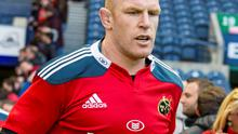 Paul O'Connell: Not signed for Toulon, say European champions