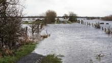 Flooding in the Roscommon region Pic:Mark Condren