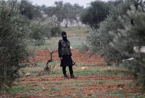 A member of al Qaeda's Nusra Front carries his weapon as he stands in an olive tree field, near villages which the Nusra Front said they have seized control of from Syrian rebel factions, in the southern countryside of Idlib
