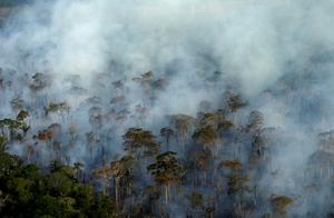 Smoke billows during a fire in an area of the Amazon rainforest last Setember. Poto: Reuters/Bruno Kelly/File Photo