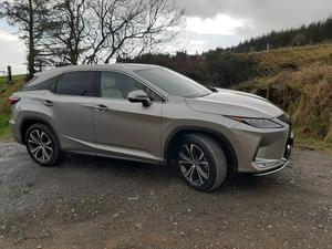 HOT OFF THE PRESS: The very competent Lexus RX450h after delivering piles of newspapers to the ASH animal charity in deepest Wicklow.