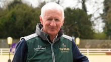 Former team manager for Horse Sport Ireland Robert Splaine. Photo: Ramsey Cardy/SPORTSFILE
