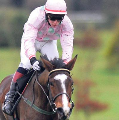 MAKE THE MIK: Mikael D'Haguenet can triumph in tomorrow's Powers Gold Cup at Fairyhouse