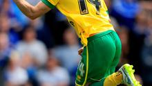 Wes Hoolahan is likely to be a key figure if Norwich are to gain promotion today