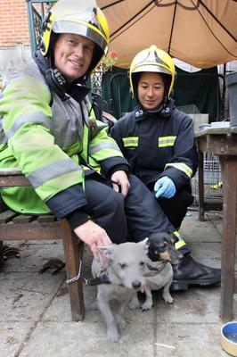 Undated handout photo issued by Hampshire Fire and Rescue of watch manager Jason Brattle and firefighter Jo Chia with two dogs that were resuscitated following a fire on Seafield Road in Redbridge where crews saved over 100 pets