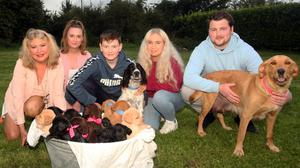 Safe and sound: Mary Allen-Killing, Natasha Fitzgerald, Isaac Killing, Maria Healy and Matthew Killing with Archie and Bella and their litter of puppies in Crecora, Co Limerick. Photo: Brendan Gleeson