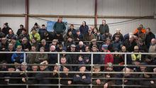 Before: A full house at Castlerea Mart in February. Photo: Brian Farrell