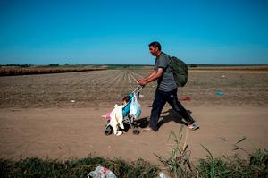 A migrant wheels his child in a pushchair on a dirt road towards the border between Croatia and Serbia, near the western-Serbia town of Sid, on September 18 2015. Migrants have begun carving a new route into the Schengen area, traveling via Croatia, after neighboring Hungary, overwhelmed by the refugee traffic, fenced off its own border with Serbia. . AFP PHOTO / ANDREJ ISAKOVICANDREJ ISAKOVIC/AFP/Getty Images