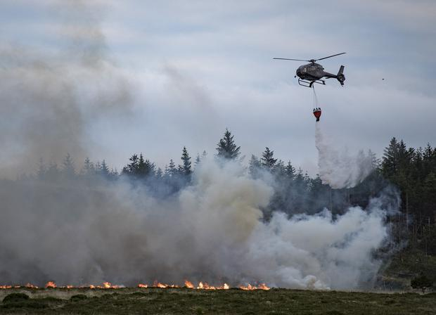 Heating up: Firefighters working to contain gorse fires. Picture: Arthur Carron