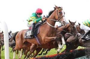 Top Trumps: Hearts Are Trumps looks like a good each-way flutter in today's Galway Hurdle. Photo.carolinenorris.ie