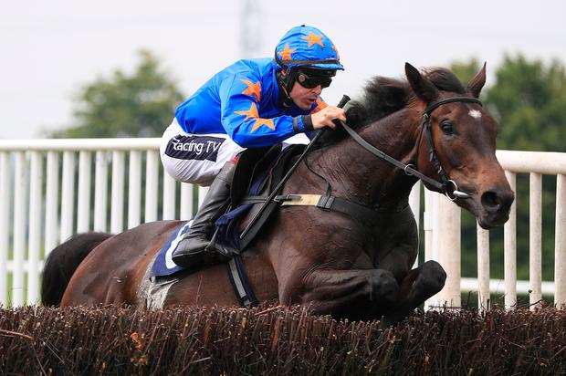 The Jam Man ridden by Aidan Coleman jumps the last to win the Jigsaw Sports Branding Novices' Handicap Chase at Southwell Racecourse, Southwell. Photo: Mike Egerton/PA Wire.
