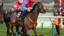 Quevega, here winning at Cheltenham under Ruby Walsh, puts her Ladbrokes World Series Hurdle crown on the line at Punchestown today. Photo: Barry Cregg / SPORTSFILE