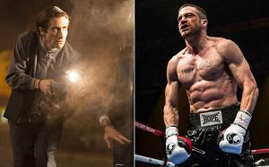 Jake Gyllenhaal lost weight for Nightcrawler but has piled on the pounds for Southpaw