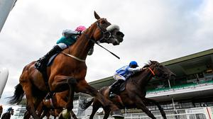 Centroid, with Gavin Ryan up, left, crosses the line ahead of Penny Out, with Trevor Whelan up, to win the Easyfix Handicap