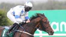 EASIER STANDARD: Make A Challenge drops down a grade at the Curragh. Photo: Caroline Norris