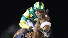 Havana Rocket can make his mark on return from a long absence