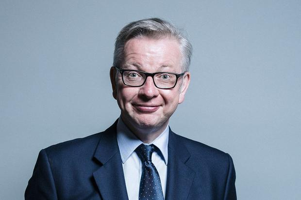 Backtrack: Michael Gove faced criticism over his initial comments