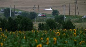 A part of the fuselage of Malaysia MH17 can be seen in a field at the crash site in Ukraine