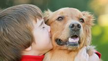 Smooching your pet dog could actually be good for your health.