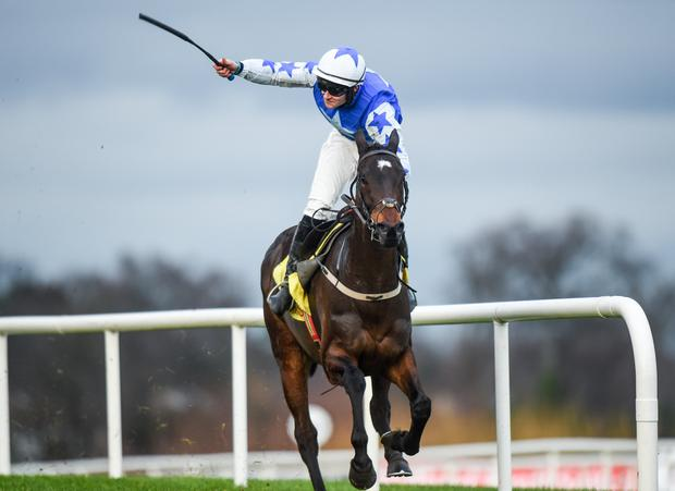 Kemboy in action at Leopardstown. Photo by Barry Cregg/Sportsfile